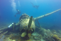 Регионам поручат охрану подводных памятников