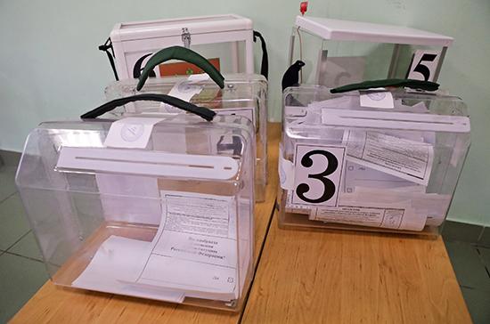 Горовой: проголосовали около 30% россиян, находящихся в изоляторах