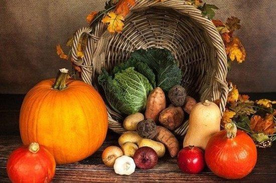 Диетолог перечислила продукты, полезные для похудения