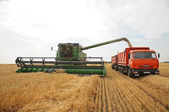 Патрушев: в 2020 году урожай зерна составит 122,5 млн тонн