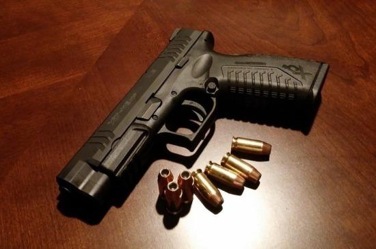 Лицензии на оружие планируют перевести в электронный формат