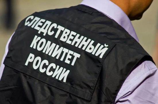 Следственный комитет назвал возможную причину обрушения перехода в Подмосковье