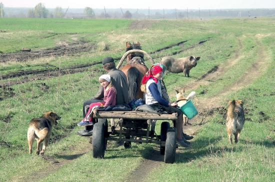 Кабмин намерен выделить дополнительные средства на развитие села