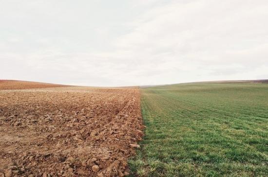 В России планируют вовлечь в сельхозоборот более 12 млн га неиспользуемых земель
