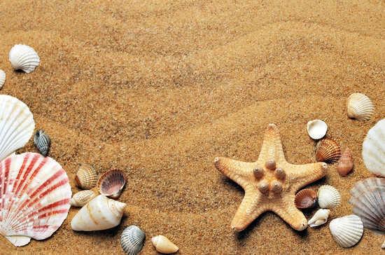 Лишним грунтом с морского дна распорядятся власти