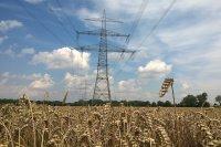 В парламенте предлагают снизить тарифы на электроэнергию для сельхозпроизводителей