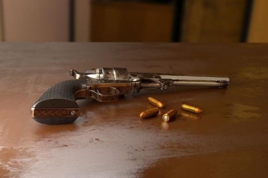 Росгвардию предлагается наделить правом уничтожать невостребованное оружие