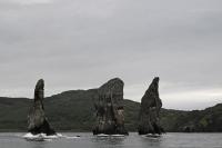 В Следственном комитете назвали основную версию причины загрязнения акватории Камчатки