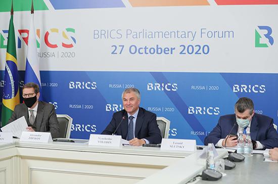 Володин предложил разработать регулярный механизм парламентского взаимодействия стран БРИКС