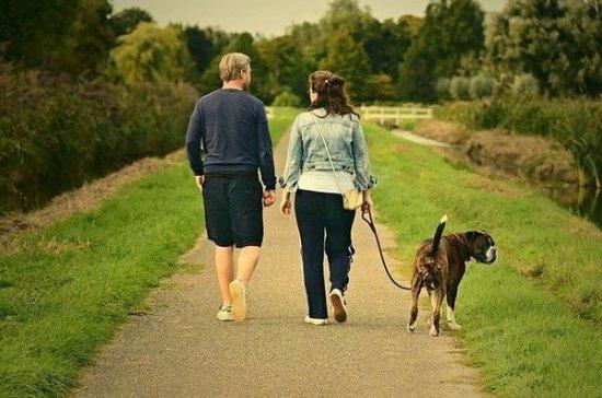 Диетолог рассказал, когда прогулка может быть полезнее спорта