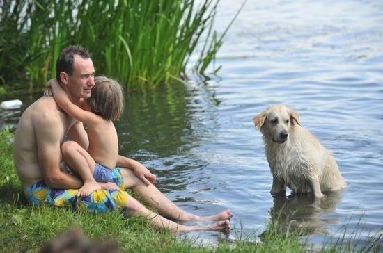 Скоро на пляж нельзя будет пойти с собакой