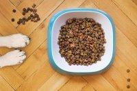 В КоАП предложили ввести штраф для продавцов поддельных кормов для животных
