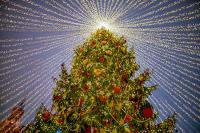 Власти Подмосковья призвали отметить Новый год в кругу семьи