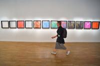 В Москве до 15 января приостановят проведение выставок