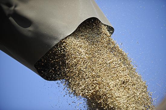 В кабмине поддержали создание госсистемы прослеживаемости зерна