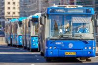 Правила получения прав для водителей автобусов хотят изменить