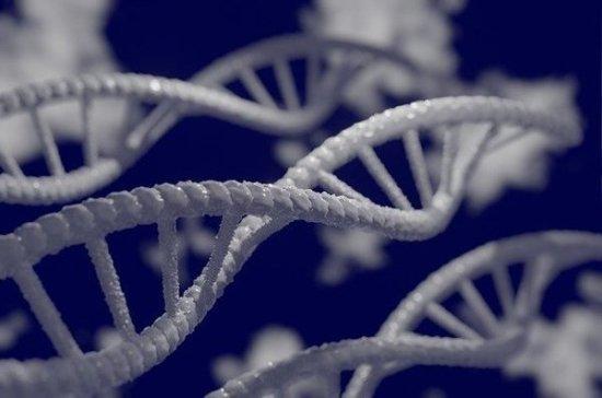 МВД внедряет анализ ДНК животных для расследования экопреступлений