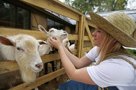 В законе предложили закрепить понятия сельского и аграрного туризма