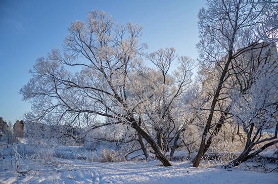 Синоптики предупредили о снеге в московском регионе