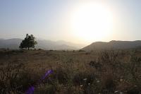 Гендиректор ЮНЕСКО предложила направить миссию в Нагорный Карабах