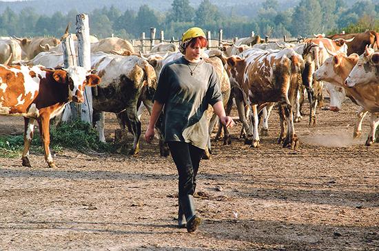 Сельхозкооперативам будет легче привлекать денежные средства