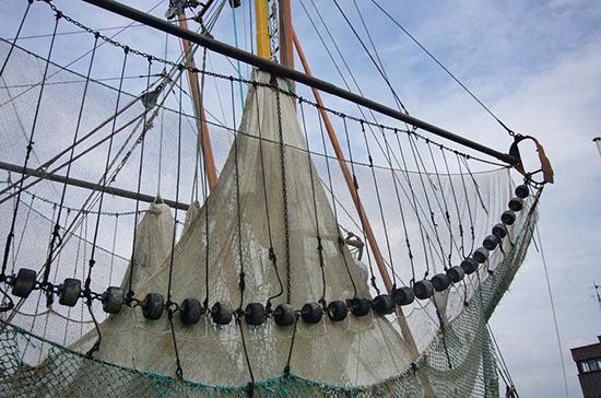Совет Федерации ратифицировал соглашение о сдерживании незаконного рыбного промысла