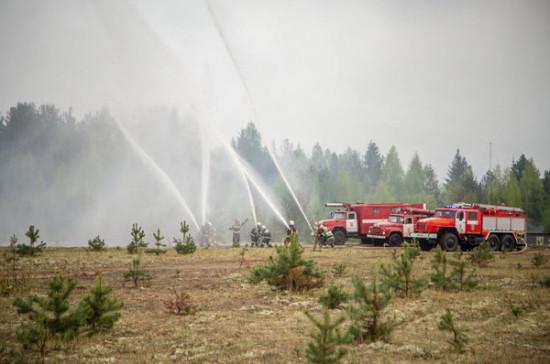 Регионам разрешат самостоятельно тушить ландшафтные пожары