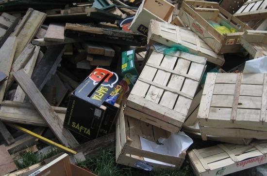 В России предложили создать центры сбора древесных отходов
