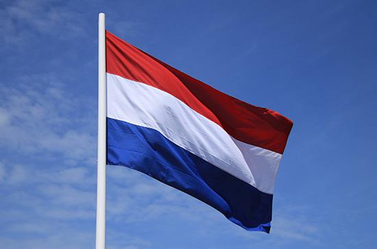 СМИ: Нидерланды объявили двух российских дипломатов персонами нон грата