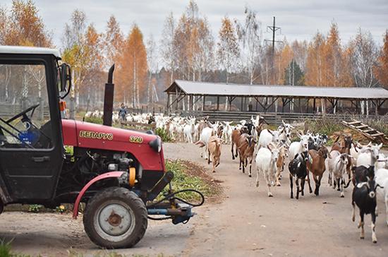 Фермерские хозяйства сохранят статус юрлица