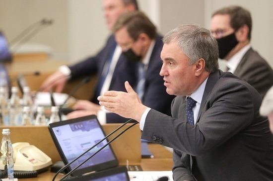 Володин оценил введение штрафов за пропаганду наркотиков в Интернете