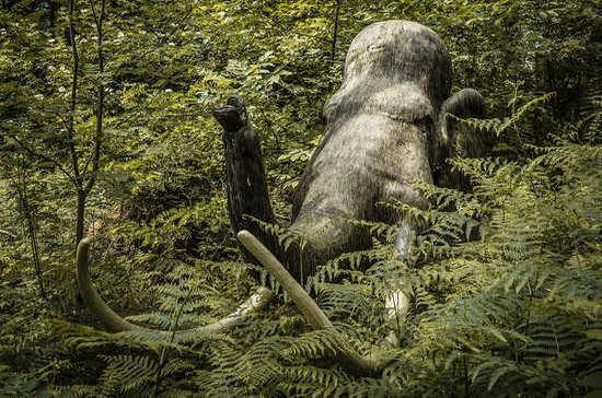 Продажу бивней мамонтов предлагают вывести из «серой зоны»