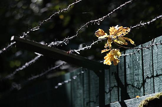 Коронавирус не выпустят из тюрьмы на свободу