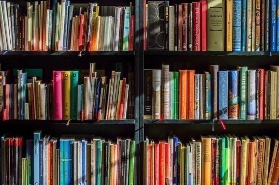 Украина запретила ввоз еще 18 российских книг