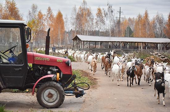 Минимальное число граждан для создания сельхозкооперативов предлагают снизить