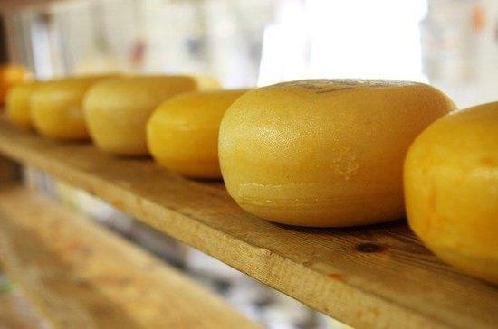 Диетолог предостерег от чрезмерного увлечения сыром