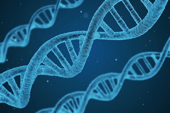 В России хотят ввести ДНК-регистрацию пропавших и их родственников
