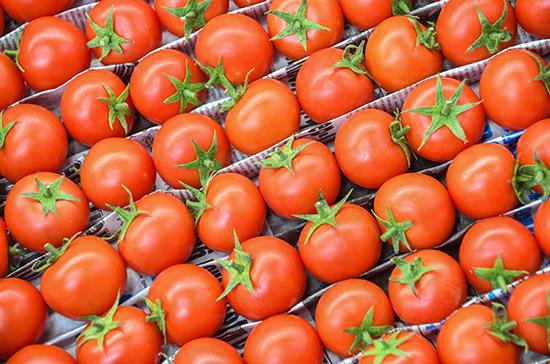 В Россию разрешили ввозить томаты и перцы с 13 предприятий Армении
