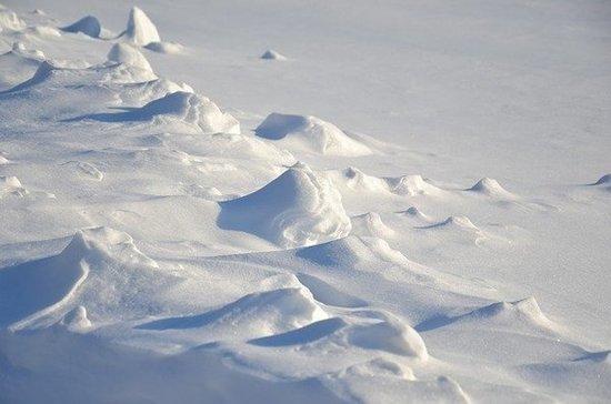 Школьника на Камчатке спасли из огромного сугроба