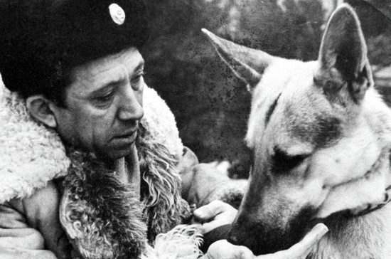 Собакам-охранникам положено пол-литра молока «за вредность»