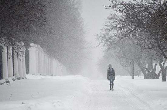 Москвичей предупредили о метели и сильном ветре