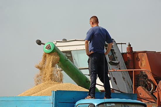 Аграрии могут начать получать субсидии от экспортной пошлины на зерно в июле