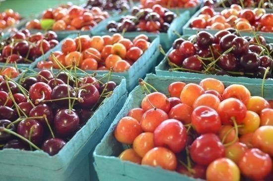 Сельхозпродукты предлагают ионизировать для лучшего хранения