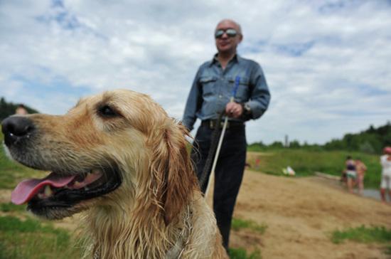 Выписать собаку-поводыря можно рядом с домом