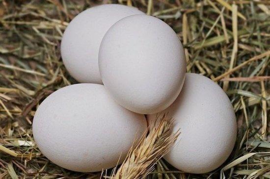 В Минсельхозе прокомментировали возможный рост цен на яйца и птицу