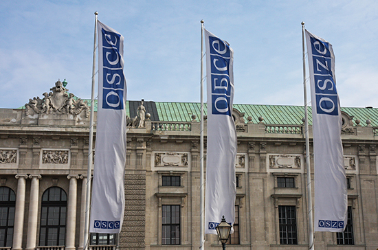 Делегация из России в ОБСЕ подняла тему нарушения прав русскоязычных граждан на Украине