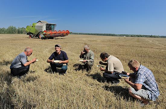 Сельхозкооперативам хотят снизить штрафы за несвоевременное предоставление отчётов ЦБ