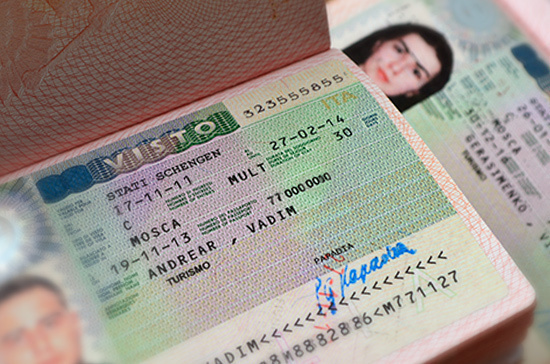 Иностранцам с родственниками из России хотят упростить выдачу виз