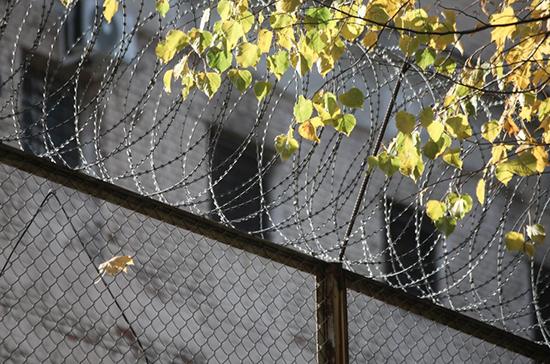 В России хотят установить ответственность за повторную передачу телефонов в тюрьмы