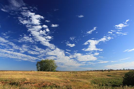 По программе «Дальневосточный гектар» предлагают выдавать больше земли